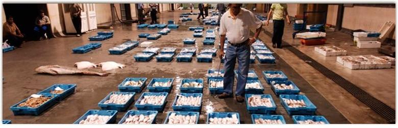SAN PEDRO PINATAR La Ribera y Lo Pagan Рынок